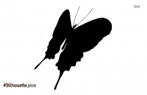 Cartoon Butterfly Symbol Silhouette