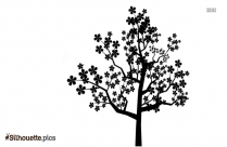 Pine Tree Drawing Silhouette Vector And Graphics