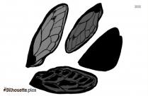 Cartoon Cicada Wings Silhouette