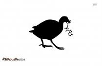 Cartoon Coot Silhouette Image