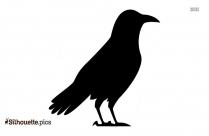 Cartoon Crow or Raven Silhouette