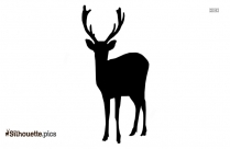 Wild Deer Silhouette Colorful Image