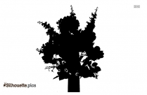 Delphinium Flower Silhouette Free Vector Art
