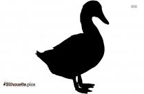 Cartoon Duck Silhouette Image