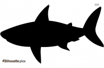 Cartoon Fish Silhouette Drawing