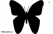 Colorful Butterfly Wallpaper Silhouette Clip Art