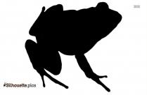 Jumping Frog Cartoon Silhouette Illustration