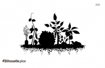 Flower Pot Silhouette Image And Vector