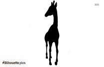 Cartoon Giraffe Icon Silhouette Clipart
