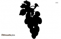 Mango Fruit Silhouette Image And Vector
