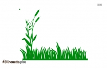 Grass Plant Silhouette Background
