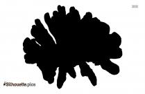 Turnip Silhouette