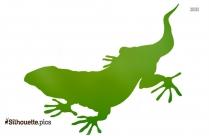 Lizard Drawings Silhouette Art