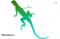 Lizard Drawing Silhouette Vector And Graphics