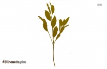 Cartoon Magnolia Leaves Silhouette