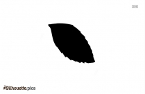 Spring Leaf Silhouette Image And Vector