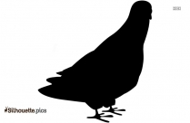 Cartoon Bird Silhouette Drawing