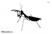 Cartoon Praying Mantis Bug Silhouette
