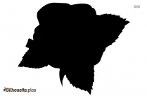 Single Rose Silhouette Image Picture