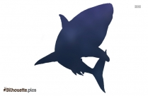 Cartoon Shark Silhouette Clipart