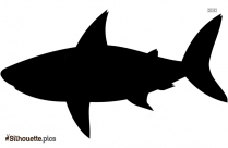 Cartoon Shark Silhouette Illustration