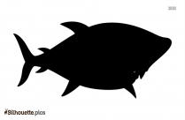 Cartoon Shark Silhouette Vector And Graphics Illustration