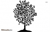 Free Tree Cartoon Sketches Silhouette
