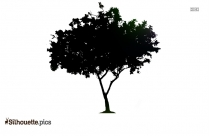 Green Christmas Tree Silhouette Drawing