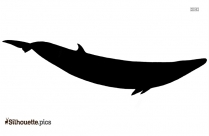 Jumping Whale Silhouette Background