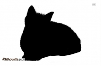 Cat Only Silhouette