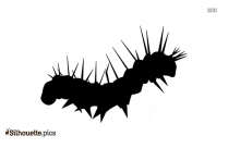 Caterpillar Insect Clipart Silhouette Image
