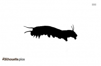 Caterpillar Insects Silhouette Free Vector