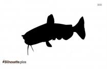 Catfish Clipart Silhouette Image