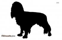 Boxer Dog Domestic Animals Silhouette