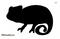 Lizard Drawings Silhouette Illustration