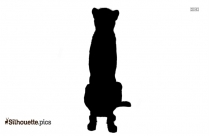 Chinchilla Sitting Silhouette