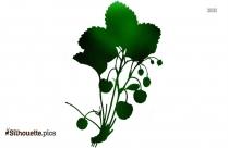 Cherry Plant Silhouette Art