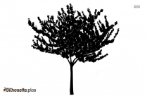 Butterfly Tree Silhouette Drawing