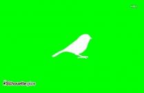 Seagull Bird Silhouette Picture