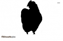 Flying Bird Drawing Silhouette Clipart