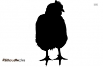 Chicken Silhouette Picture, Vector