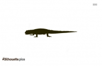 Silhouette Picture Of A Reptile