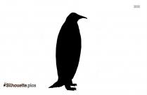 Adelie Penguin Girl Silhouette