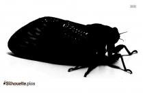 Cicada Killer Wasp Silhouette Icon