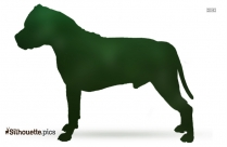 Bloodhound Breed Dog Image Silhouette