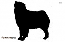 Boykin Spaniel Puppies Image Silhouette