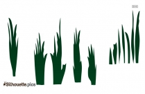 Cut Out Plant Grass Silhouette Image