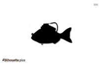 Barracuda Fish Vector Silhouette