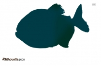 Red Bellied Piranha Silhouette