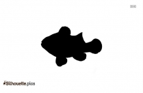 Clownfish Vector Silhouette Images